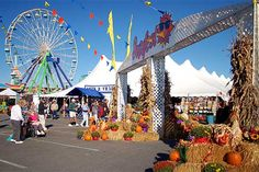 Sunfest in Ocean City this Weekend!
