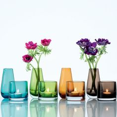 Flower Colour Bud Vase Collection from Iittala
