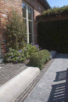Photo gallery clay pavers