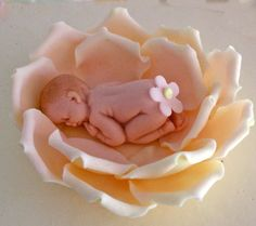 Fondant baby shower cake topper of new born baby sleeping in a rose - York PA