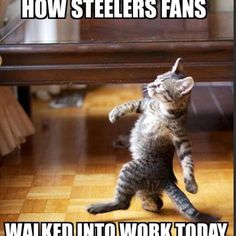 Day after Steelers victory!
