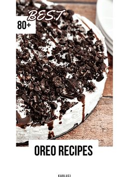 No Mint Oreo Please. No Bake Mint Oreo Cheesecake ~ Oreo crust piled with light and fluffy cheesecake flavored with mint and topped with crushed Oreos and chocolate syrup! No Bake Desserts, Easy Desserts, Delicious Desserts, Dessert Recipes, Yummy Food, Summer Desserts, Summer Recipes, Beste Brownies, Oreo Brownies