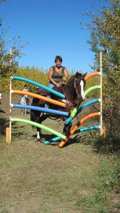 Horse Wash Pool Noodle Obstacle
