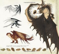 The Art of How to Train Your Dragon How to Train Your Dragon Film: Amazon.co.uk: Tracey Miller-Zarneke: Books