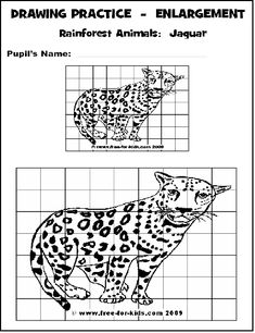 Free printables for enlargement worksheets-practice for grid drawing Drawing Practice, Drawing Skills, Drawing Lessons, Drawing Tips, Art Sub Plans, Art Lesson Plans, Drawing Grid, Art Handouts, Rainforest Animals