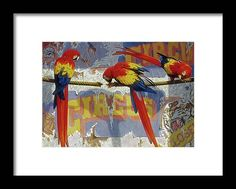 Parrot Perch, Circus Poster, Black Wood, Hanging Wire, Clear Acrylic, Original Paintings, Framed Prints, Birds, Animation