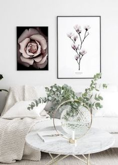 Beautiful close-up poster of blooming roses. The dimensions of the poster include a built-in white picture mount. Elephant Poster, Lion Poster, New York Poster, Nature Posters, Love Posters, Morning Sun, Good Morning Posters, Hogwarts, Marilyn Monroe Poster
