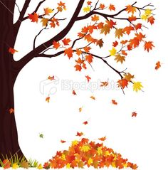 Autumn Tree And Pile of Leaves Royalty Free Stock Vector Art Illustration Autumn Painting, Autumn Art, Autumn Trees, Autumn Leaves, Tree Illustration, Watercolor Illustration, Fall Drawings, Fall Clip Art, Autumn Crafts