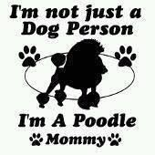 Im not just a Dog Person I am a Poodle Mommy which are you???