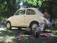 Majówkowy piknik? :)