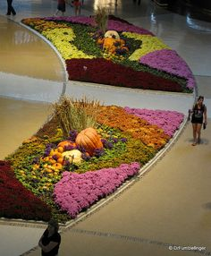 Las Vegas -- City Center Crystals Mall - There is a rotating exhibit of plants which changes seasonally. This display was for Thanksgiving.