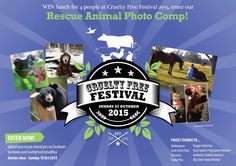 We are launching our Rescue Animal Photo Competition via Facebook with 8 chances to win a free lunch for 4! Check out the contest app in our Facebook page! 📷🎉 Photo Competition, Festivals 2015, Animal Rescue, Cruelty Free, Product Launch, Lunch, App, Facebook, Movie Posters