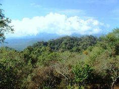 Terrenos Campestres Panoramicos Credito.En Lo mas Alto de Colima. | Comala…