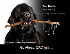 Yes even newfies like http://www.lisawelchdesigns.com designs!!