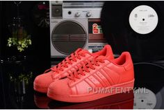 http://www.pumafenty.nl/goedkoop-dames-heren-adidas-supercolor-superstar-rode-loopschoenen-kopen-sale.html GOEDKOOP DAMES/HEREN ADIDAS SUPERCOLOR SUPERSTAR RODE LOOPSCHOENEN KOPEN SALE Only 57,80€ , Free Shipping!