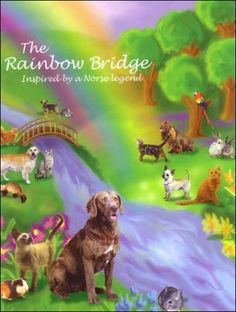 Image result for rainbow bridge, pets afterlife