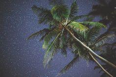 ahafh.tumblr.com www.flickr.com/photos/jakubdohnalek/