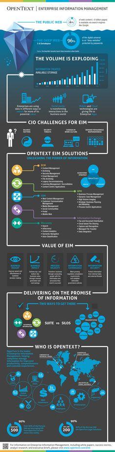 Enterprise Information Management via OpenText
