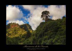 Baranco de la Fuente - Baranco de la Fuente auf La Palma. Unglaublich was für Naturlandschaften man auf dieser einzigartigen Insel findet. Desktop Screenshot, Art, Fonts, Canary Islands, Art Background, Kunst, Performing Arts, Art Education Resources, Artworks