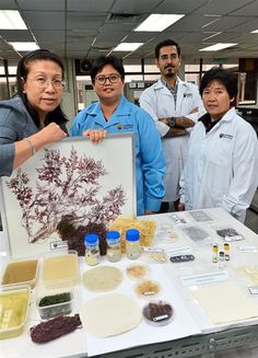 Prof Dr Phang Siew Moi, director of the university's Institute Of Ocean And Earth Sciences, and her colleagues and students have been researching the properties of red algae as well as its capacity for being turned into pulp and bioethanol.