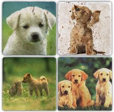 Oscar Stone  Dogs Doğal Taş Bardak Altılığı : 24,90 TL   evmanya.com