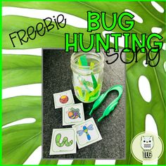 Oh, hunting we will go! Oh, hunting we will go! This fun song would be a great addition to your bug theme or springtime theme. Kids will love singing along and acting out, by adding bugs to the jar.