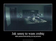 That's True Memes Polish Memes, Weekend Humor, You Deserve Better, True Memes, Read News, Reading Lists, Everything, Haha, Jokes
