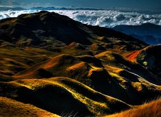 Mt Pulag National Park, Philippines / rolling hills / above the clouds / light and shadow /