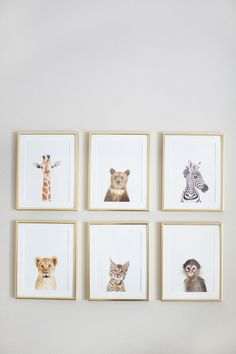 Sharon Montrose animal prints: http://www.stylemepretty.com/living/2015/07/14/the-prettiest-art-to-dress-up-your-walls/