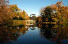 The Conservatory at Painshill Park - Ultimate Experience