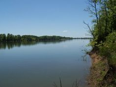 Great spot to have some fun on the river. Just drop a line and catch some fish. Located at the end of the cul-de-sac for privacy. Buy both lots 1 & 2 for $15,000. Selling below tax appraisal in Morris Chapel TN