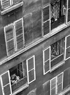 precursor: andre kertesz in budapest, paris, new york Andre Kertesz, Budapest, Robert Doisneau, Edward Weston, Old Photography, Street Photography, Photography Composition, Cara Fresca, New York City