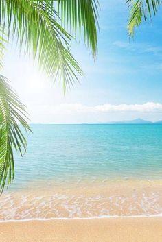 Tropical Beaches With Palm Trees Strand Wallpaper, Beach Wallpaper, Mobile Wallpaper, I Love The Beach, Tropical Beaches, Jolie Photo, Beach Scenes, Ocean Beach, Sunny Beach