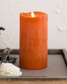Our Miracle Flame candles give you the natural beauty of candlelight at the touch of a button. With their beautiful autumn colors and chalky finish, these fall candles have a distressed quality that's perfect for creating a lived-in look for your home. Fall Candles, Flameless Candles, Pillar Candles, Halloween Scene, Halloween Season, Halloween Decorations, Balsam Hill, Artificial Tree, Tree Shapes