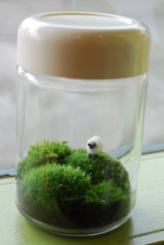 irish landscape in vintage heller jar  This is just TOO CUTE!  I want to do this.  I love the little sheep on the hill. Such a wonderful reminder of Ireland.