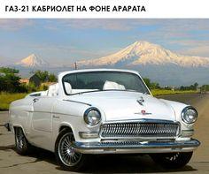Volga 21spider