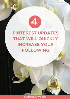 4 Pinterest Updates That Will quickly Increase Your Following