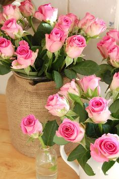 I planted two pink rose bushes this year. They were loaded with flowers almost all summer. Love Rose, My Flower, Pretty Flowers, Pink Flowers, Parfum Rose, Coming Up Roses, Colorful Roses, Beautiful Roses, Simply Beautiful