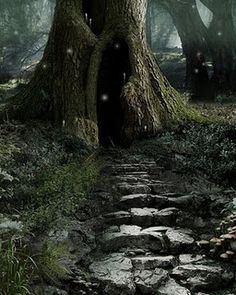 mystical tree writing prompt