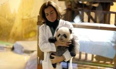 Zookeeper Maria Delclaux holds panda cub 'Xing Bao' during an event to announce his name at the Zoo Aquarium in Madrid, Spain. The panda's n...