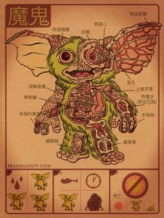 Anatomy poster of a gremlin. I always imagined they were just full of candy and rainbows. Lol