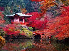 Il tempio Daigoji nella vecchia città imperiale di Kyoto è famoso per i giardini concepiti come un'opera d'arte. Gli architetti giapponesi hanno creato luoghi che ispirano e trasmettono pace...oasi irrinunciabili nel cuore di uno dei paesi più industrializzati...