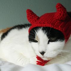 Devil hat for cat -- Ravelry (pattern for sale)