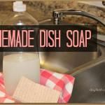 Homemade Dishwasher Detergent and Rinse Agent – $ave Naturally