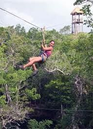 zip line...maybe not too high off the ground.