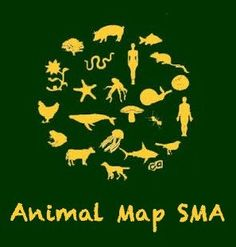 Protect and Care for All Animals in SMA with Respect, Compassion and Care in Cooperation with Community in SMA and Globally Care For All, Compassion, Community, Change, Respect, Natural, San Miguel De Allende, Animales, Life