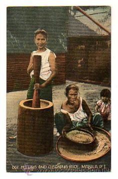 PHILIPPINES. FILIPINAS. MANILA. LIMPIANDO Y MOLIENDO ARROZ. (Postales - Postales Extranjero - Asia - Filipinas) Philippine Fashion, Reference Images, My Heritage, Vintage Pictures, Manila, Philippines, Countries, Spanish, Rpg
