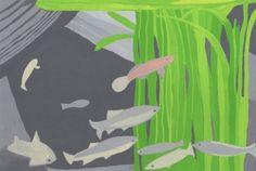 本日の一枚。2017/9/10川魚の水槽。