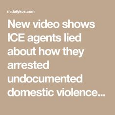 New video shows ICE agents lied about how they arrested undocumented domestic violence victim