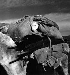Rest the lamb, France in 1958 © Robert Doisneau / Rapho, - Doisenau Birthday 50 unreleased pix Henri Cartier Bresson, Robert Doisneau, French Photographers, Street Photographers, Old Pictures, Old Photos, Tier Fotos, Black And White Pictures, Black White